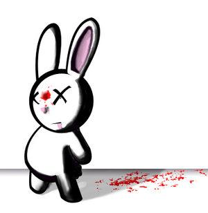 Dead bunny is dead