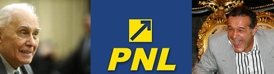"""PNL vine de la """"penal""""?"""