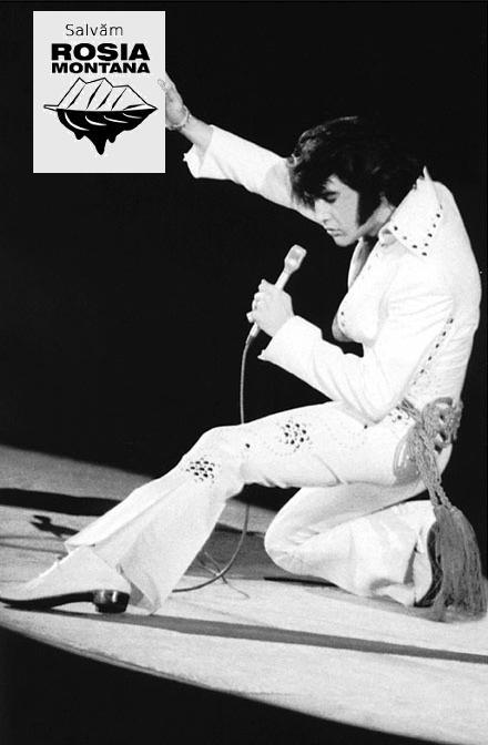 Elvis salveaza Rosia Montana