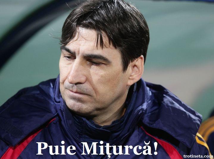 Piturca