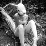 paranoia bunny
